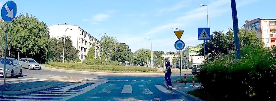 krzakiwid_920